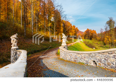 path from the in to the autumn forest 44699996