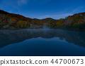 ฤดูใบไม้ร่วง,ต้นเมเปิล,การท่องเที่ยว 44700673