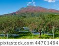 iwaki mountain, apple, autumnal 44701494