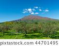 iwaki mountain, apple, autumnal 44701495