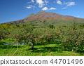 iwaki mountain, apple, autumnal 44701496
