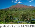 iwaki mountain, apple, autumnal 44701498