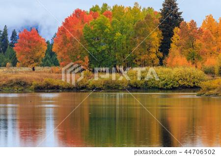 Scenic Autumn Reflection Landscape 44706502