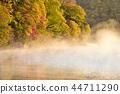 Okunikko Chuzenji Lake Sentegahama: ป่าฤดูใบไม้ร่วงอาบแสงแดดยามเช้าและทะเลสาบที่ปกคลุมด้วยหมอก 44711290