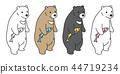 動物 熊 北極熊 44719234