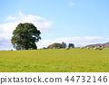 스코틀랜드의 목장 44732146