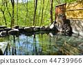 Fresh green hot spring outdoor bath 44739966