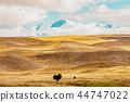 山峰 西兰岛 新 44747022