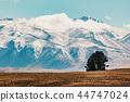 山峰 西兰岛 山 44747024