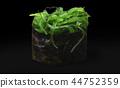 sushi with algae chuka 44752359
