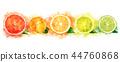 Watercolor orange, lemon, citrus, mandarin, grapefruit and lime 44760868