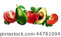 Avocado and tomato on white background. Watercolor illustration 44761004