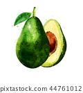 Avocado on white background. Watercolor illustration 44761012