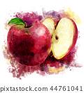ผลไม้,สีแดง,แอปเปิล 44761041
