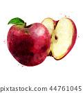ผลไม้,สีแดง,แอปเปิล 44761045