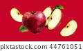 ผลไม้,สีแดง,แอปเปิล 44761051