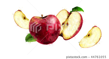 Red Apple on white background. Watercolor illustration 44761055