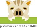 이상한 멧돼지 44763600