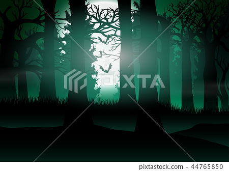 Forest view with the background of full moon light 44765850