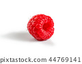 Single raspberry isolated on white background. 44769141