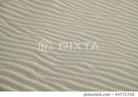 Windprint Sandprint Sand Dune 44772788