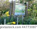 하스 누마 해변의 숲 지바 현립 누마 해변 공원 44773087