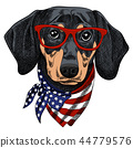 Vector illustration of a funny Dachshund dog wearing red glasses 44779576
