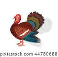 turkey watercolor bird 44780688