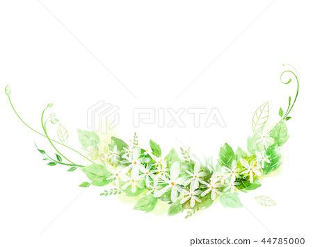 꽃,아름다움,일러스트 44785000