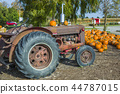 Pumpkins above truck 44787015