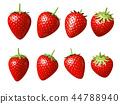 草莓CG草莓草莓草莓 44788940