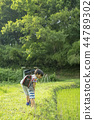 小学生在上学的路上 44789302