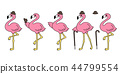 pink,flamingo,vector 44799554
