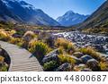 Hooker Valley, Aoraki Mount Cook, New Zealand 44800687