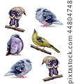 Cute birds watercolor Vector. Colorful painted 44804748