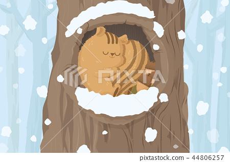 灰鼠在冬天背景中 44806257