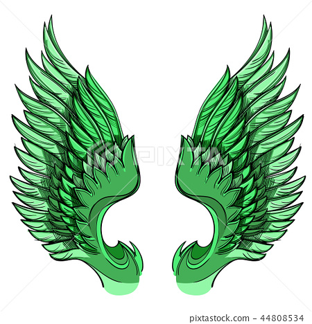 Vector illustration of green wings, isolated on white background. 44808534