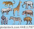 animal elephant zebra 44811787
