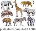 elephant, animal, zebra 44811788