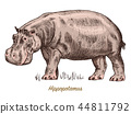 African hippopotamus Wild animal on white background. Engraved hand drawn line art Vintage old 44811792