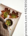 maple, leaves, coffee 44828656