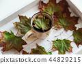 maple, leaves, tea 44829215