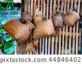 ปลา,เอเชีย,ชาวเอเชีย 44846402