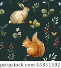 兔子 兔 松鼠 44851392