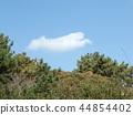 blue sky, blue, White Clouds 44854402