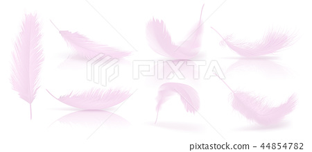 realistic 3d set of pink bird feathers 44854782