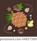 Vector Illustration of Nuts. 44857389