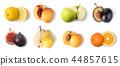 水果 部分 章节 44857615