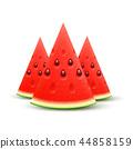 Watermelon realistic sliced fruit, vector 44858159