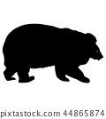 곰, 갈색, 다갈색 44865874